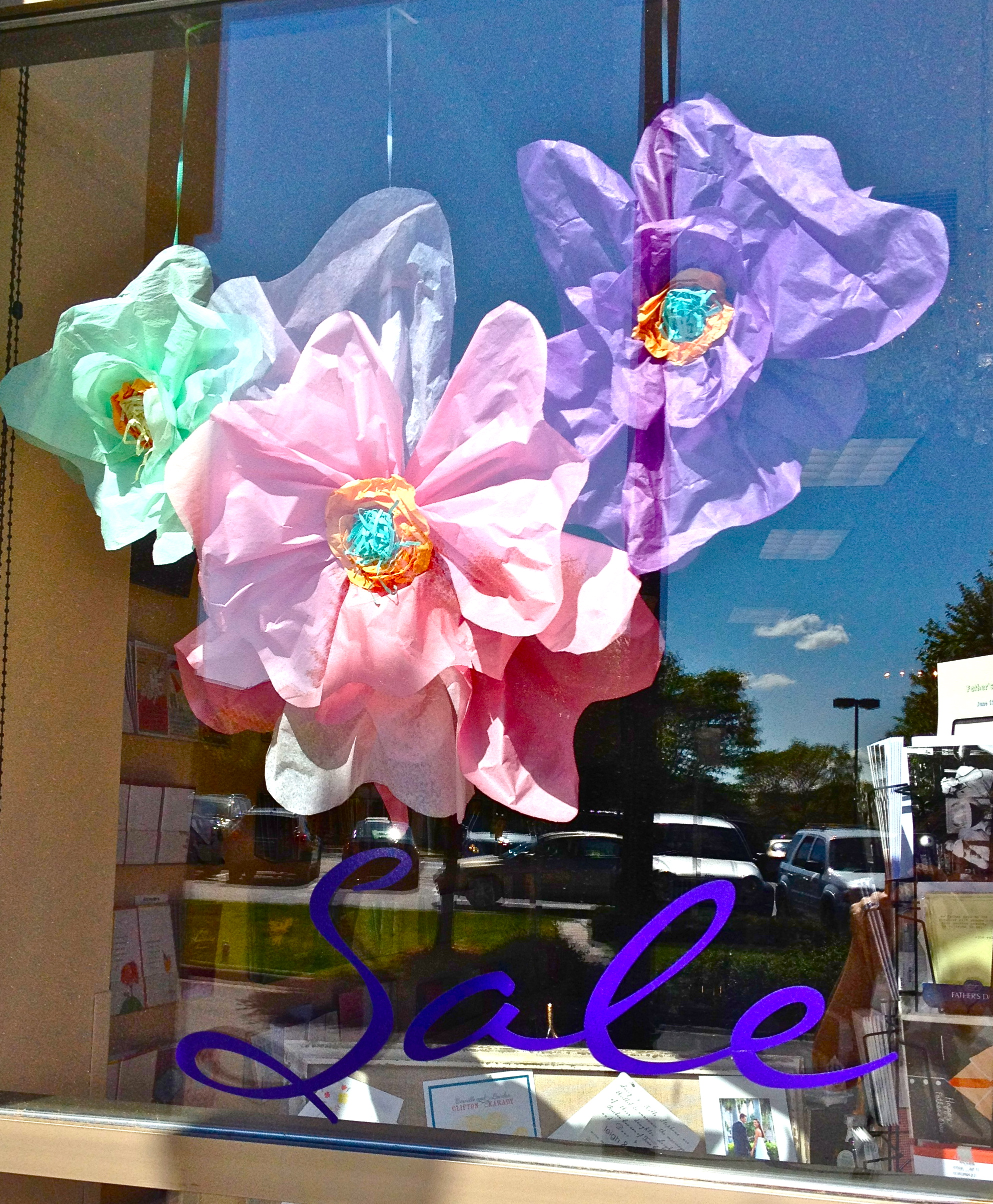 Spring Windows, Big Tissue Paper Flowers, Display Decor